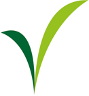 Enviroscape Leaf